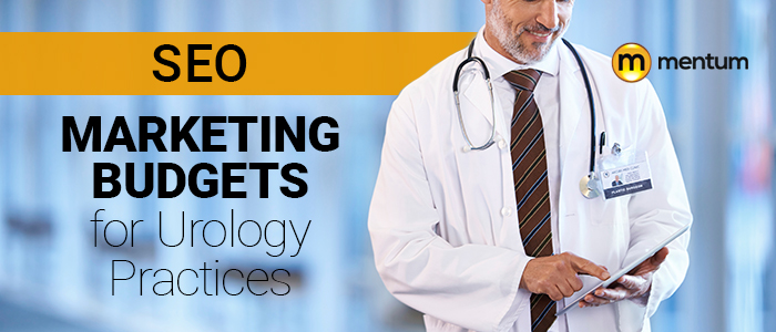 seo budgets for urology practices